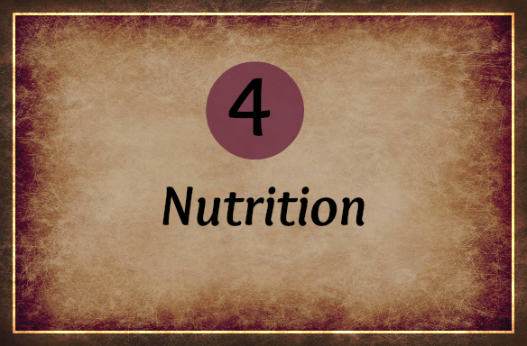 4-nutrition